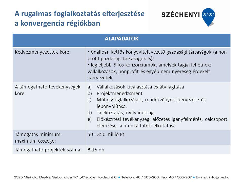 A rugalmas foglalkoztatás elterjesztése a konvergencia régiókban ALAPADATOK Kedvezményezettek köre: önállóan kettős könyvvitelt vezető gazdasági társa