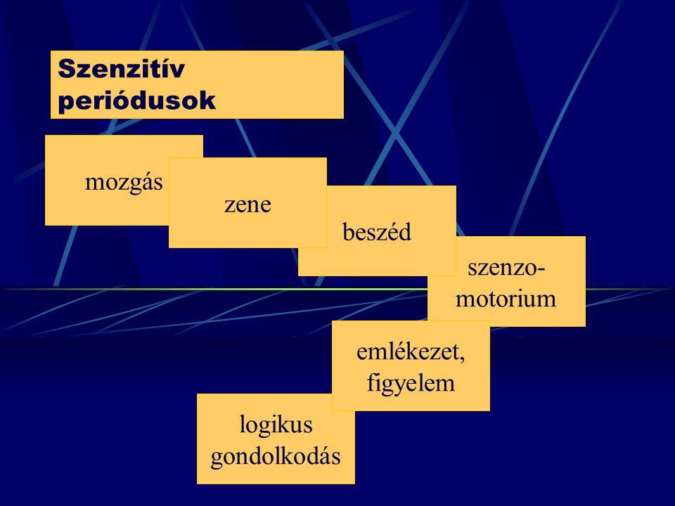 Szenzitív periódusok logikus gondolkodás szenzo- motorium beszéd mozgás zene emlékezet, figyelem