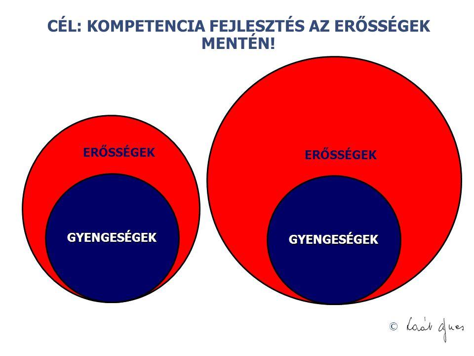 © GYENGESÉGEK ERŐSSÉGEK GYENGESÉGEK CÉL: KOMPETENCIA FEJLESZTÉS AZ ERŐSSÉGEK MENTÉN!