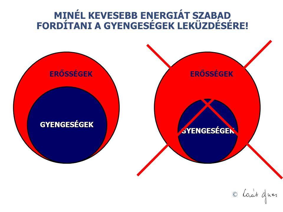 © GYENGESÉGEK ERŐSSÉGEK GYENGESÉGEK MINÉL KEVESEBB ENERGIÁT SZABAD FORDÍTANI A GYENGESÉGEK LEKÜZDÉSÉRE!