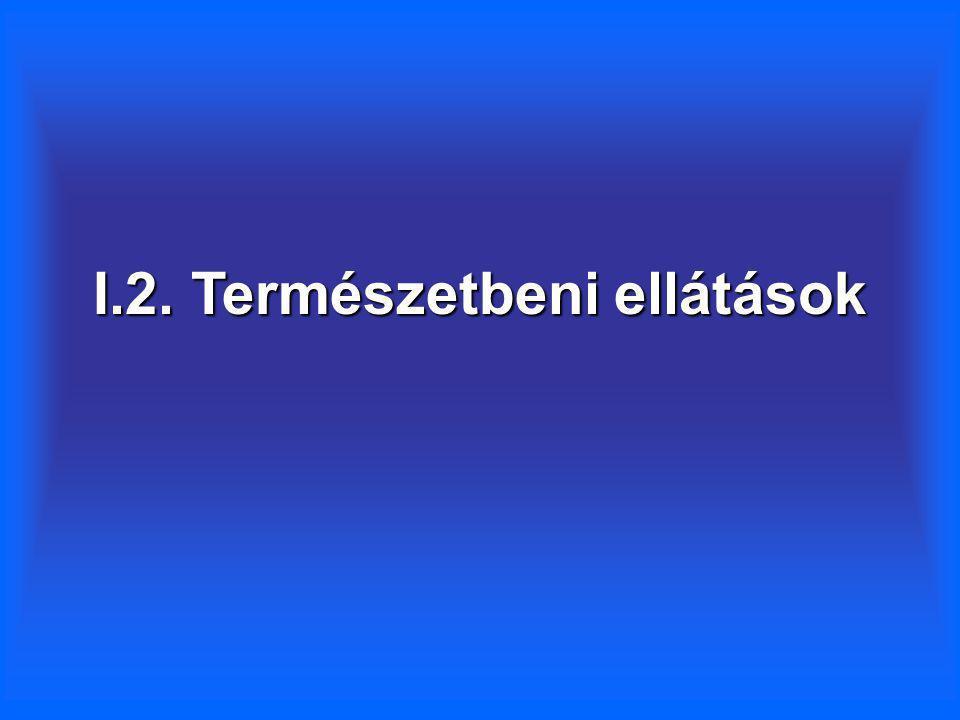 I.2. Természetbeni ellátások