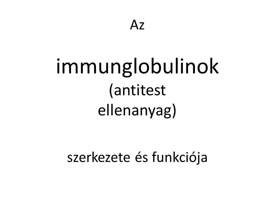 Az immunglobulinok (antitest ellenanyag) szerkezete és funkciója