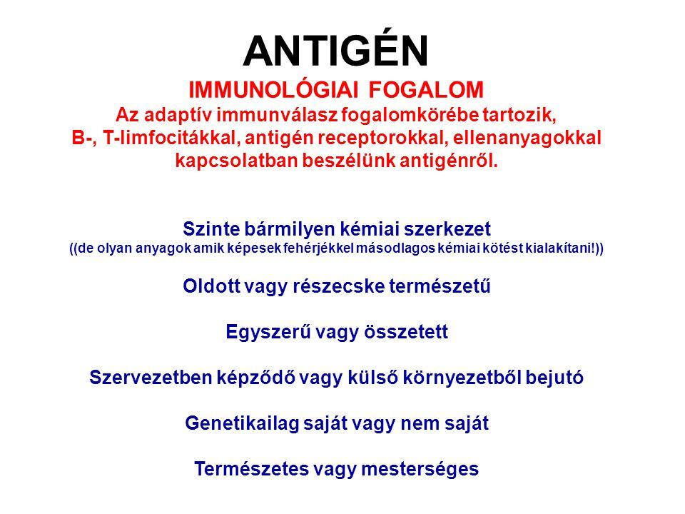 """Definíciók Antigén (Ag) - bármely olyan anyag, amelyet az érett immunrendszer felismer és vele szemben specifikus, fajlagos módon reagál (specifikus antigén receptor ismeri fel) Antigenitás: immunogenitás – az antigén képessége az (adaptív) immunválasz beindítására tolerogenitás – az antigén képessége az immunológiai tolerancia kiváltására, specifikus """"immun-nemválaszolás Ilyenek pl."""