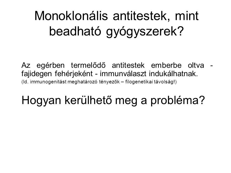 Monoklonális antitestek, mint beadható gyógyszerek? Az egérben termelődő antitestek emberbe oltva - fajidegen fehérjeként - immunválaszt indukálhatnak