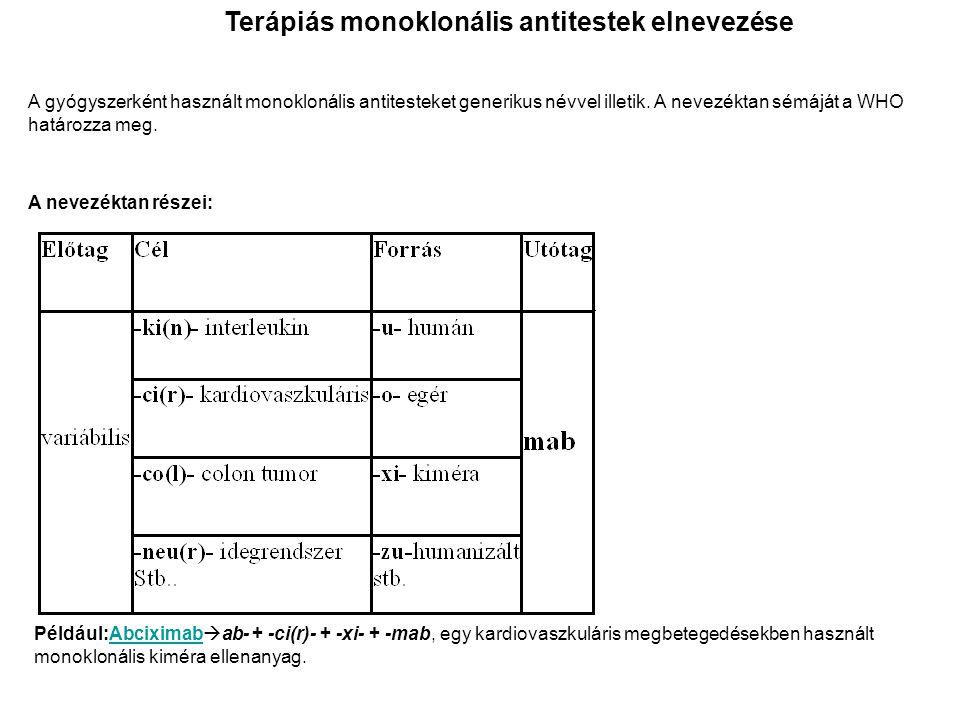 Terápiás monoklonális antitestek elnevezése A gyógyszerként használt monoklonális antitesteket generikus névvel illetik. A nevezéktan sémáját a WHO ha
