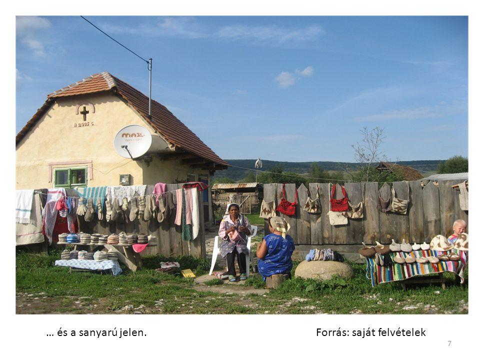 11.Közösségi gazdálkodás Közjavak -Miként bírálja R.