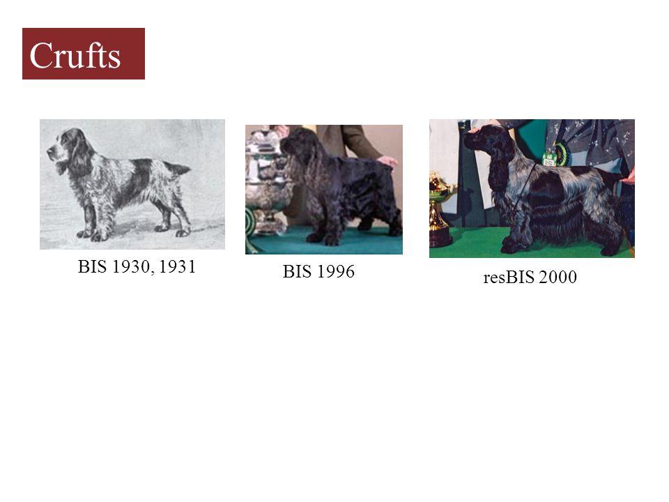 BIS 1930, 1931 BIS 1996 resBIS 2000