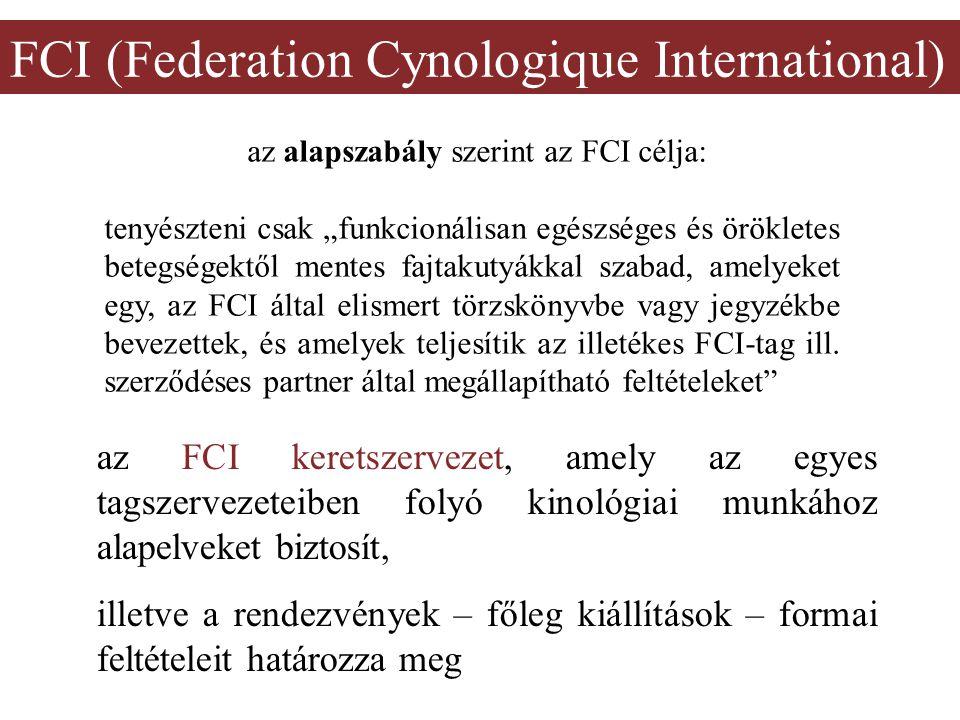 """FCI (Federation Cynologique International) az alapszabály szerint az FCI célja: tenyészteni csak """"funkcionálisan egészséges és örökletes betegségektől"""