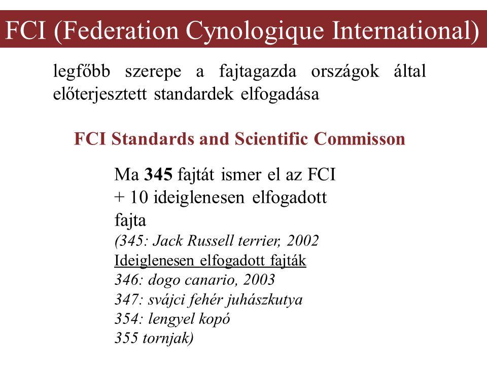FCI (Federation Cynologique International) legfőbb szerepe a fajtagazda országok által előterjesztett standardek elfogadása FCI Standards and Scientific Commisson Ma 345 fajtát ismer el az FCI + 10 ideiglenesen elfogadott fajta (345: Jack Russell terrier, 2002 Ideiglenesen elfogadott fajták 346: dogo canario, 2003 347: svájci fehér juhászkutya 354: lengyel kopó 355 tornjak)