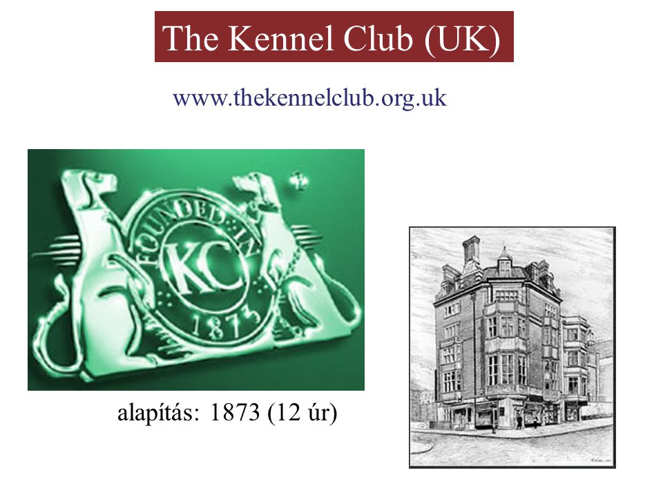 The Kennel Club (UK) 1880: universal registration rendszere eredetileg csak a kutyák nevei Stud Book 1859-73 közötti kiállítások adatai (szerk.