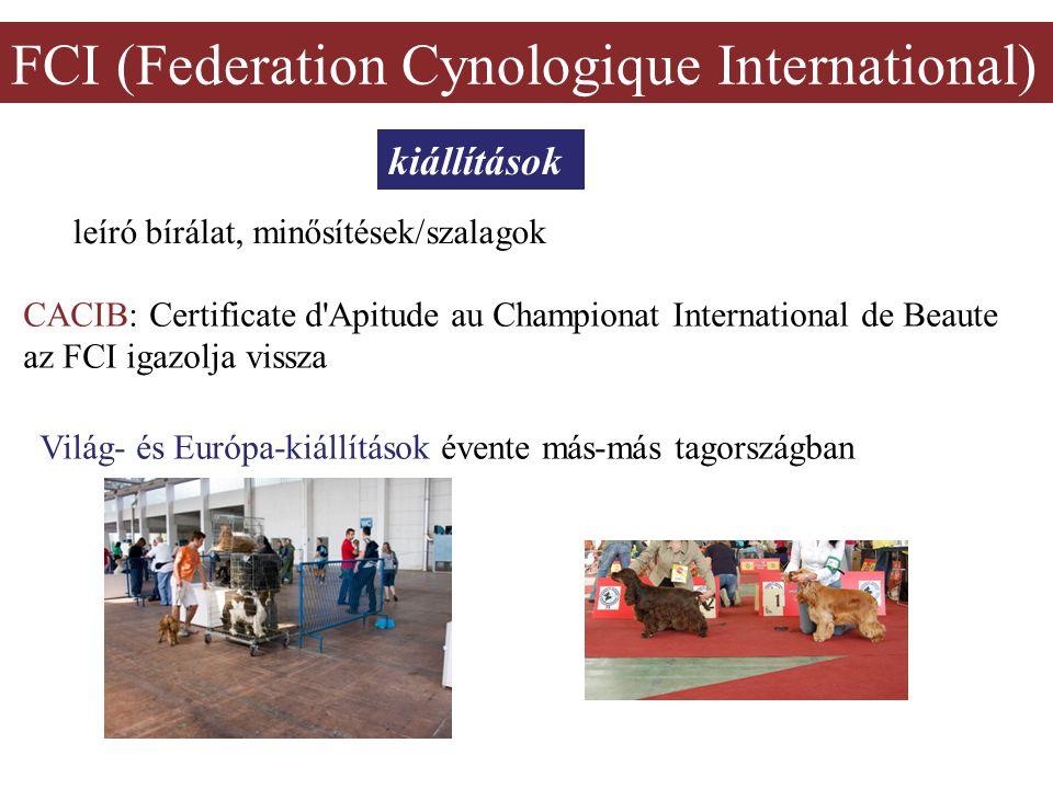 FCI (Federation Cynologique International) kiállítások leíró bírálat, minősítések/szalagok CACIB: Certificate d Apitude au Championat International de Beaute az FCI igazolja vissza Világ- és Európa-kiállítások évente más-más tagországban