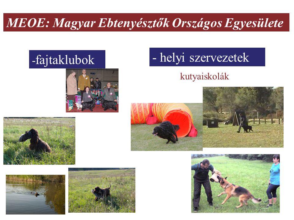 MEOE: Magyar Ebtenyésztők Országos Egyesülete - fajtaklubok - helyi szervezetek kutyaiskolák