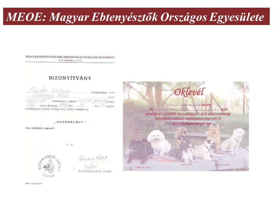 MEOE: Magyar Ebtenyésztők Országos Egyesülete