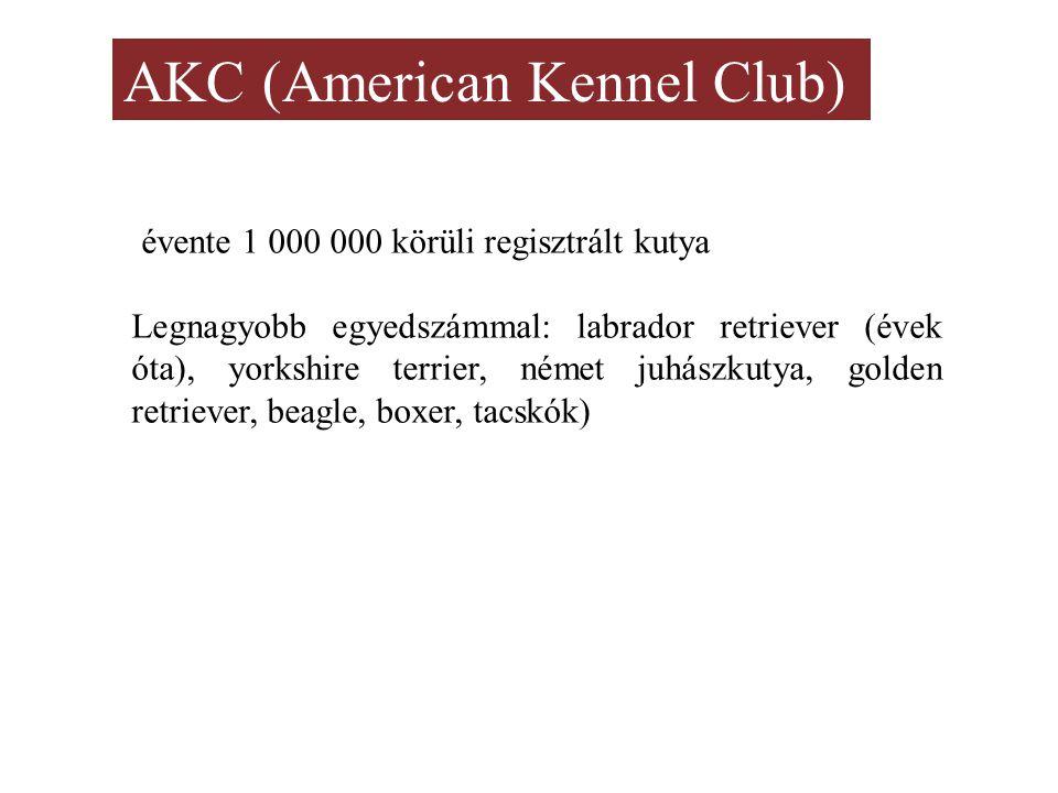 AKC (American Kennel Club) évente 1 000 000 körüli regisztrált kutya Legnagyobb egyedszámmal: labrador retriever (évek óta), yorkshire terrier, német juhászkutya, golden retriever, beagle, boxer, tacskók)