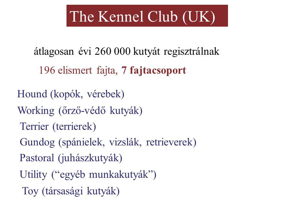 The Kennel Club (UK) átlagosan évi 260 000 kutyát regisztrálnak 196 elismert fajta, 7 fajtacsoport Hound (kopók, vérebek) Working (őrző-védő kutyák) T
