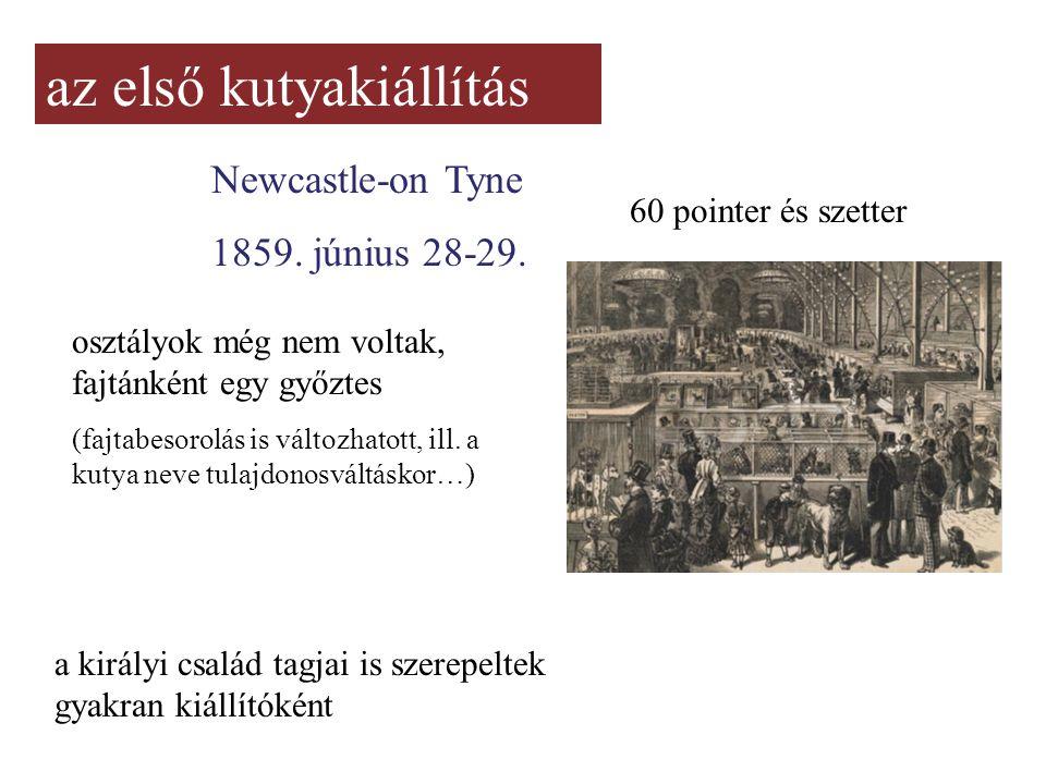 az első kutyakiállítás Newcastle-on Tyne 1859. június 28-29. 60 pointer és szetter osztályok még nem voltak, fajtánként egy győztes (fajtabesorolás is