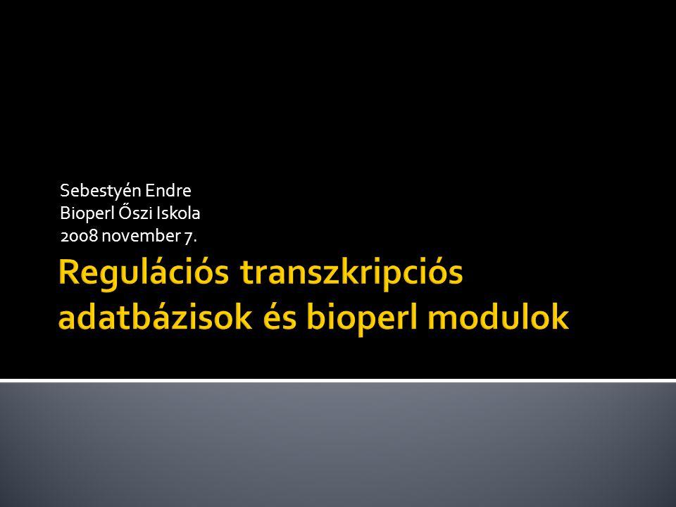 Sebestyén Endre Bioperl Őszi Iskola 2008 november 7.