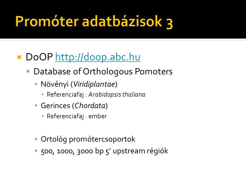  DoOP http://doop.abc.huhttp://doop.abc.hu  Database of Orthologous Pomoters ▪ Növényi (Viridiplantae) ▪ Referenciafaj : Arabidopsis thaliana ▪ Geri