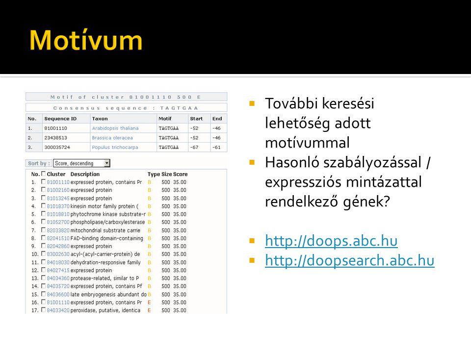  További keresési lehetőség adott motívummal  Hasonló szabályozással / expressziós mintázattal rendelkező gének?  http://doops.abc.hu http://doops.