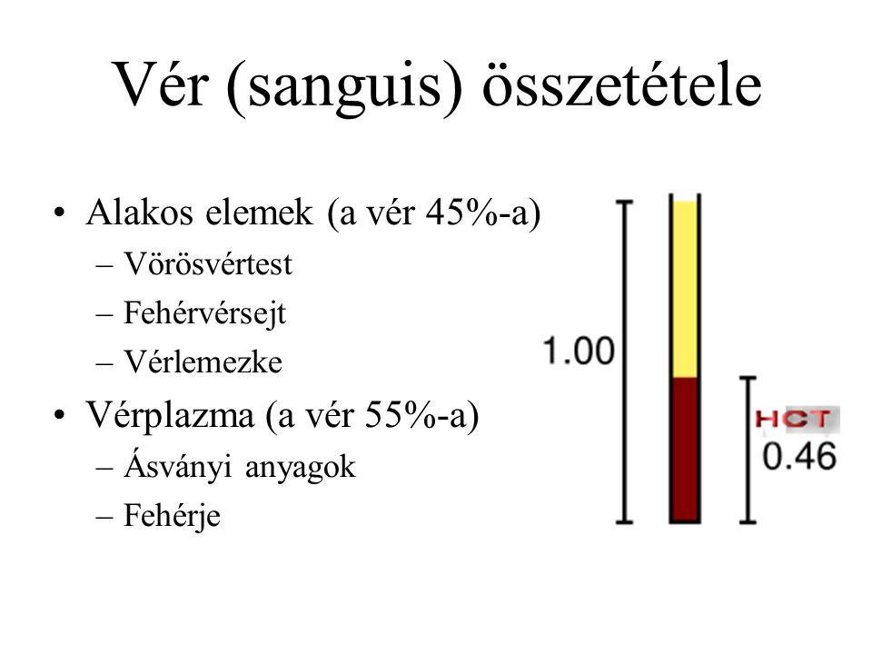 Vér (sanguis) összetétele Alakos elemek (a vér 45%-a) –Vörösvértest –Fehérvérsejt –Vérlemezke Vérplazma (a vér 55%-a) –Ásványi anyagok –Fehérje