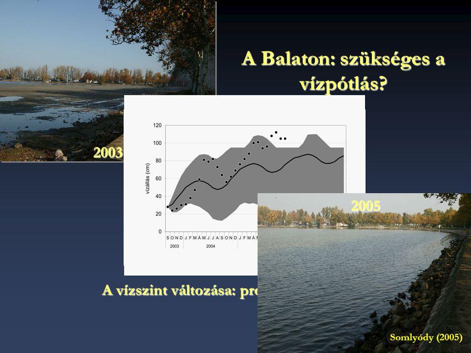 2003 A Balaton: szükséges a vízpótlás? A vízszint változása: prognózis és mérések 2005 Somlyódy (2005)