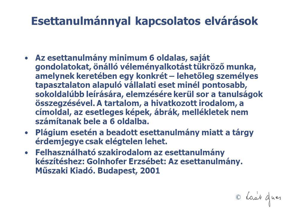 © Esettanulmánnyal kapcsolatos elvárások Az esettanulmány minimum 6 oldalas, saját gondolatokat, önálló véleményalkotást tükröző munka, amelynek keret