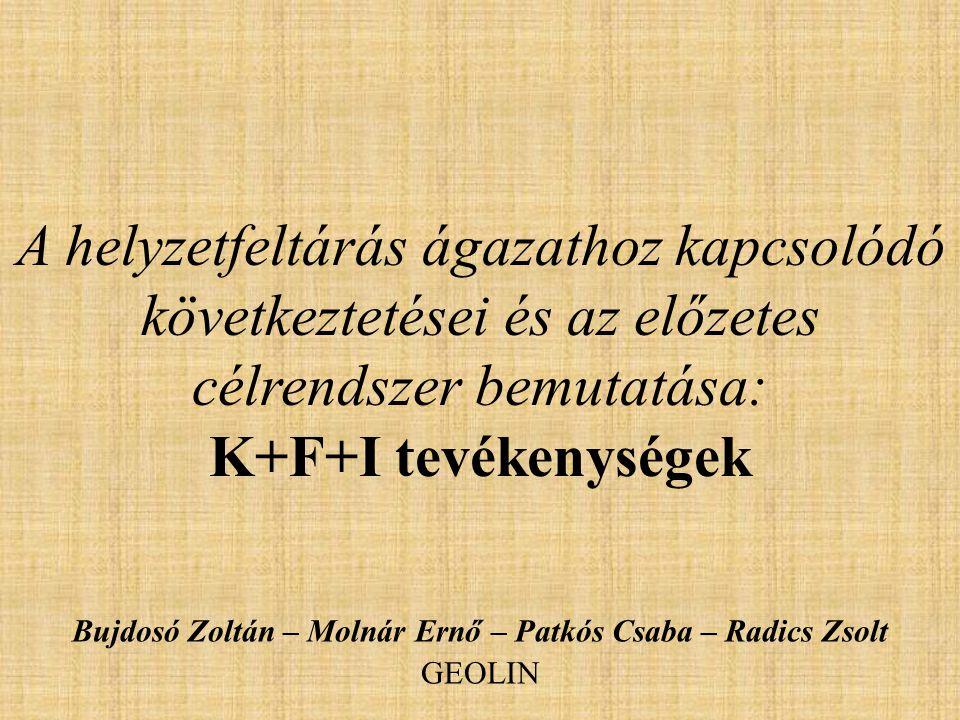 A helyzetfeltárás ágazathoz kapcsolódó következtetései és az előzetes célrendszer bemutatása: K+F+I tevékenységek Bujdosó Zoltán – Molnár Ernő – Patkós Csaba – Radics Zsolt GEOLIN