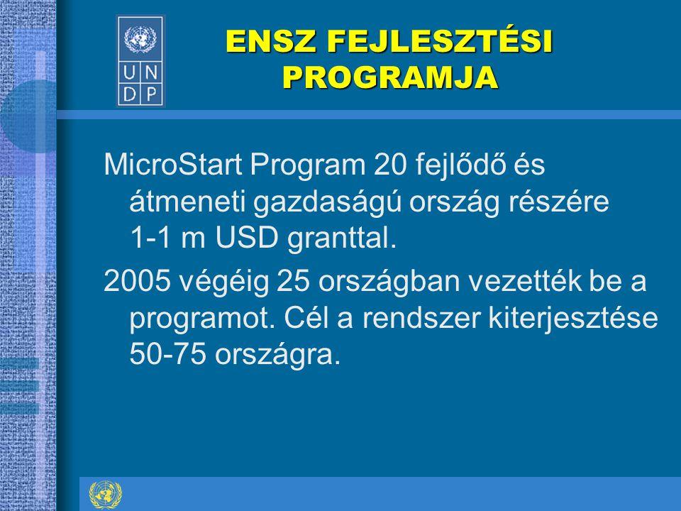 ENSZ FEJLESZTÉSI PROGRAMJA ENSZ FEJLESZTÉSI PROGRAMJA MicroStart Program 20 fejlődő és átmeneti gazdaságú ország részére 1-1 m USD granttal. 2005 végé