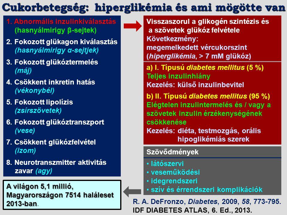 Szulfonilkarbamidok (szulfonilkarbamid receptor) Glinidek (K + -ATP csatorna) GLP-1 receptor agonisták (GLP-1 receptor) DPP-4 inhibitorok Tiazolidindionok (PPAR-  receptor) Metformin SGLT2 inhibitorok α-Glükozidáz inhibitorok INZULIN VÉRCUKOR MÁJ BÉL HASNYÁLMIRIGY VESE ZSÍRSZÖVET IZOM Inkretin Forrás: C.