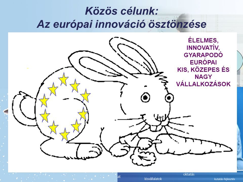 Közös célunk: Az európai innováció ösztönzése Politikai szándék és támogatás Kevesebb bürokrácia Jobban működő belső piac Hatékony szellemi termék védelem Innováció- ösztönző oktatás Vállalkozás- ösztönző pénzügyi háttér Transzatlanti kapcsolatok ÉLELMES, INNOVATÍV, GYARAPODÓ EURÓPAI KIS, KÖZEPES ÉS NAGY VÁLLALKOZÁSOK