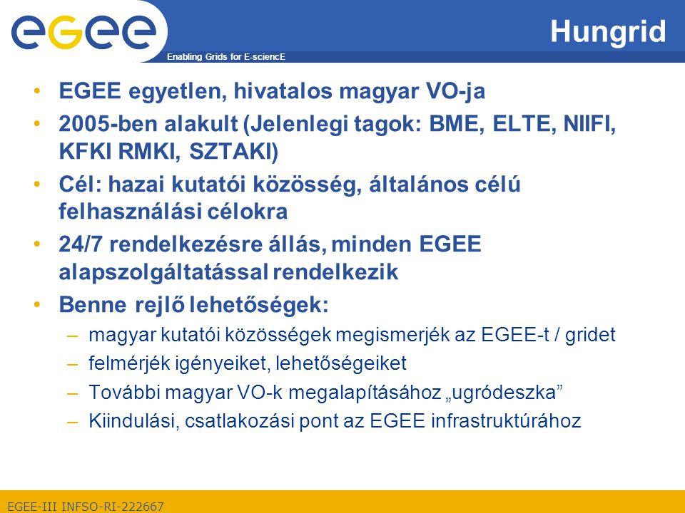 Enabling Grids for E-sciencE EGEE-III INFSO-RI-222667 A résztvevő intézetek szolgáltatásai: Jelenleg 82 felhasználó 10 aktívan küldi a nagyszámításigényű job-okat 5 publikáció Hungrid