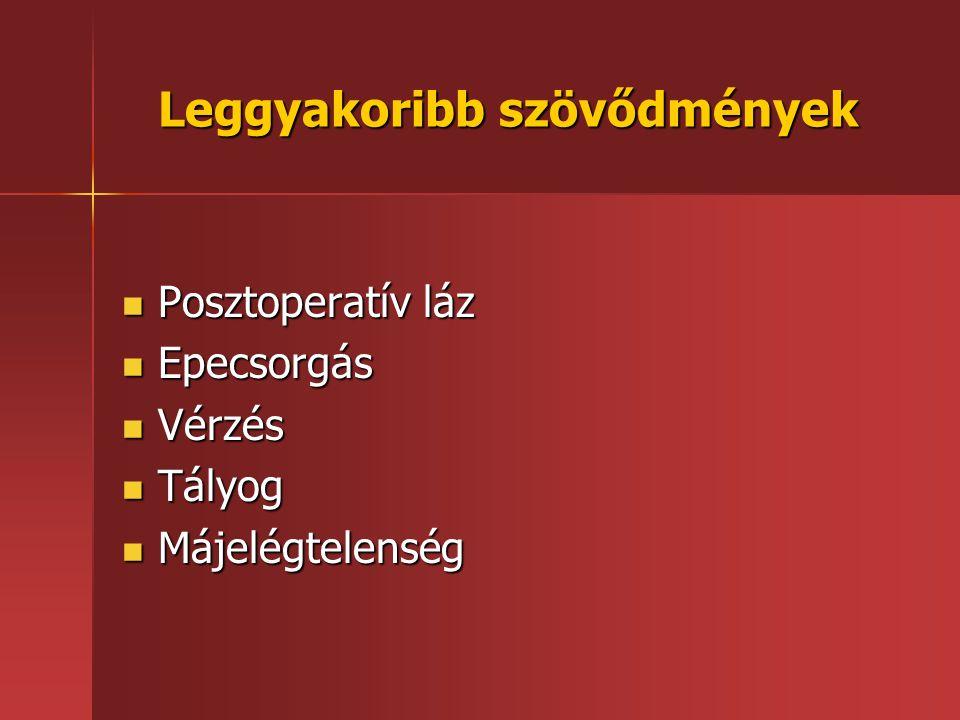 Leggyakoribb szövődmények Posztoperatív láz Posztoperatív láz Epecsorgás Epecsorgás Vérzés Vérzés Tályog Tályog Májelégtelenség Májelégtelenség