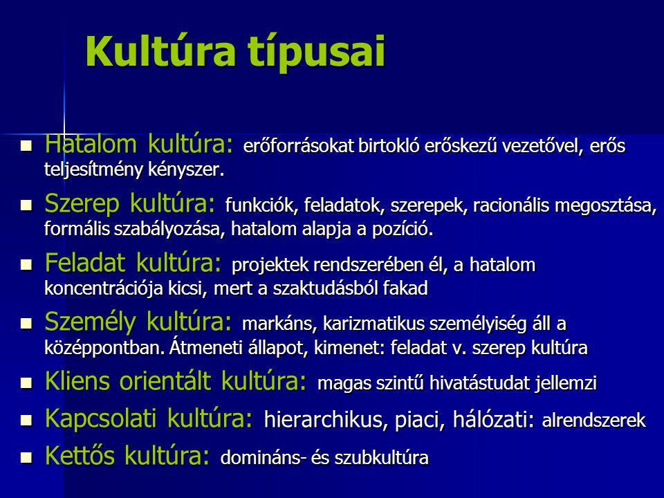 Kultúra típusai Hatalom kultúra: erőforrásokat birtokló erőskezű vezetővel, erős teljesítmény kényszer.