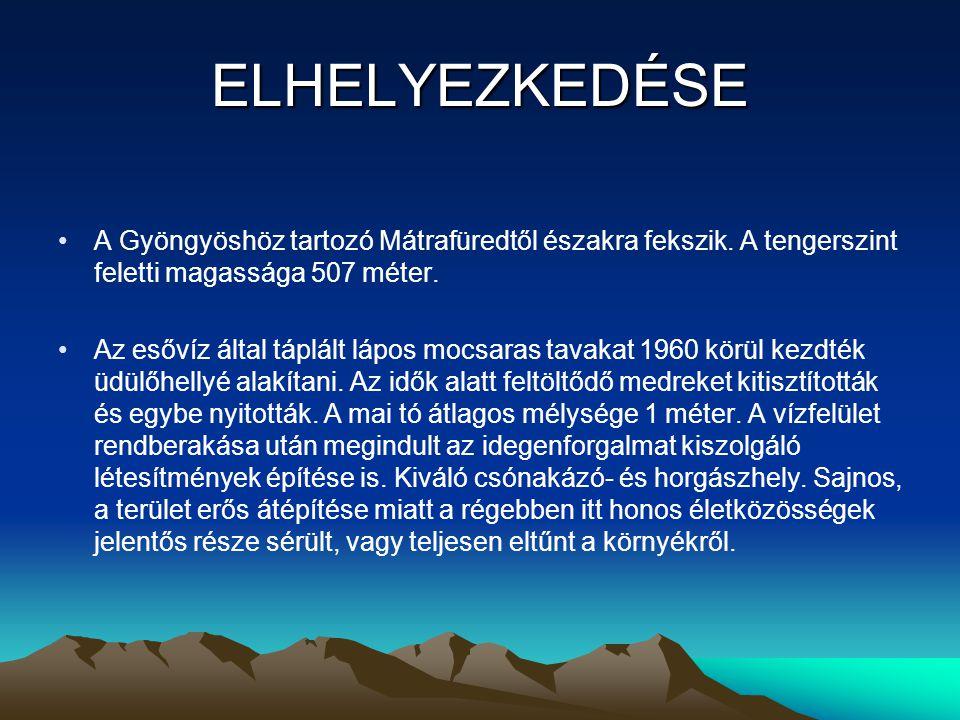 ELHELYEZKEDÉSE A Gyöngyöshöz tartozó Mátrafüredtől északra fekszik. A tengerszint feletti magassága 507 méter. Az esővíz által táplált lápos mocsaras
