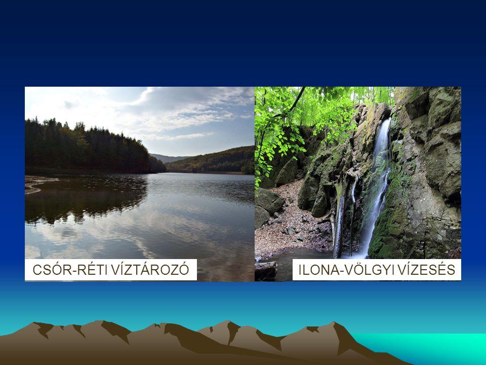 TERMÉSZETVÉDELEM A Mátravidék természeti és tájképi védelmének érdekében - 12141 hektárnyi területen - jött létre 1986-ban a Mátrai Tájvédelmi Körzet.