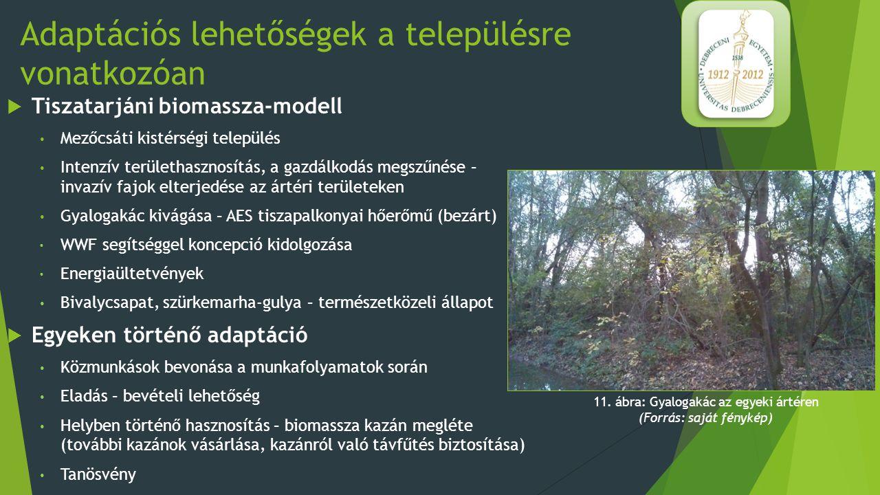 """Adaptációs lehetőségek a településre vonatkozóan  Uszkai """"modell  Szabolcs-Szatmár-Bereg megye, határmenti település  Kb."""
