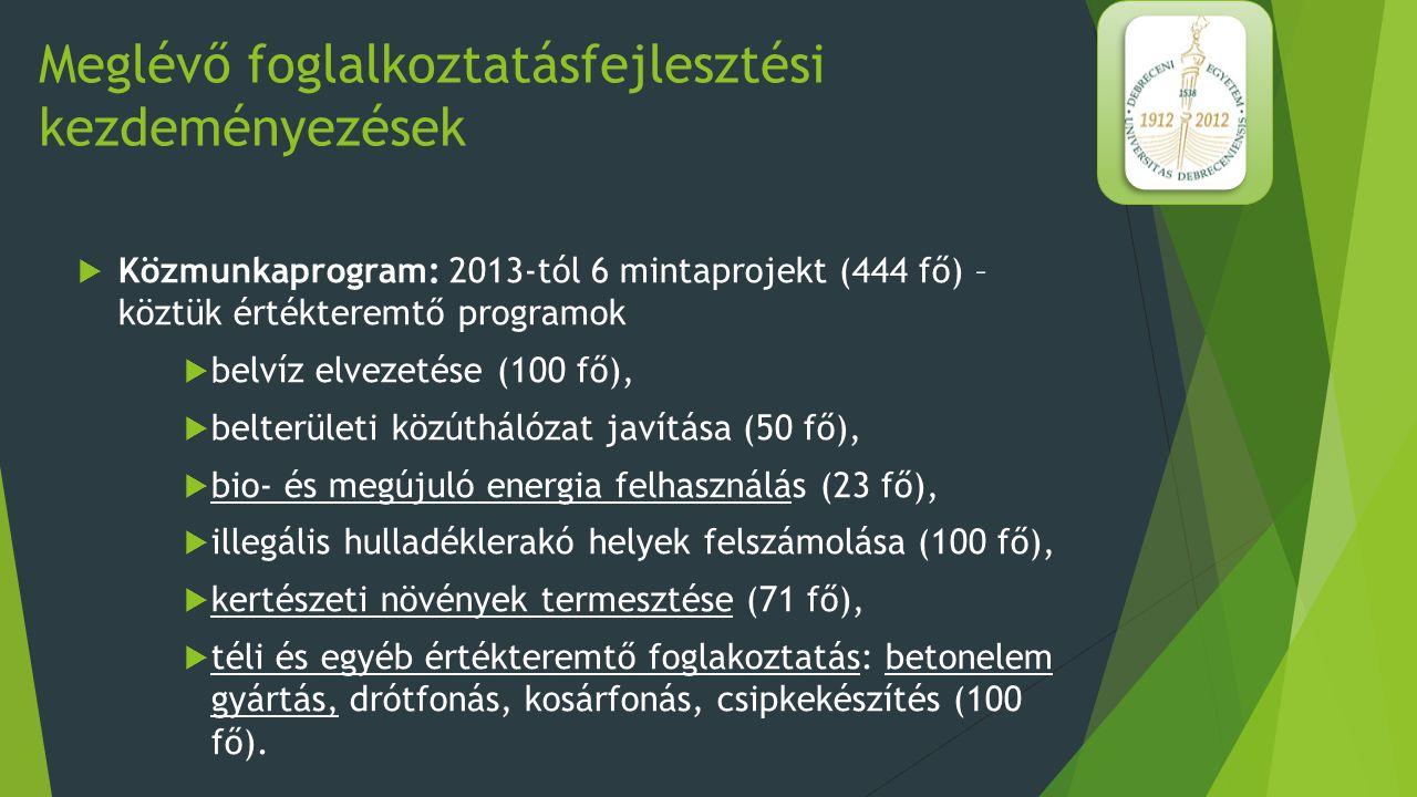 A mintaprojektek eredményei  2013: változó képet mutat (szakmai tudás, vezetés hiánya miatt) – de év végére 545 főről 117 főre csökkent az FHT-ban részesülők száma  Parlagterületek felhasználása - földprogram – kertészkedés kezdete, lucerna vetés  Biomasszakazán vásárlása – növényi hulladékok felhasználása (3 millió Ft megtakarítás) 5.