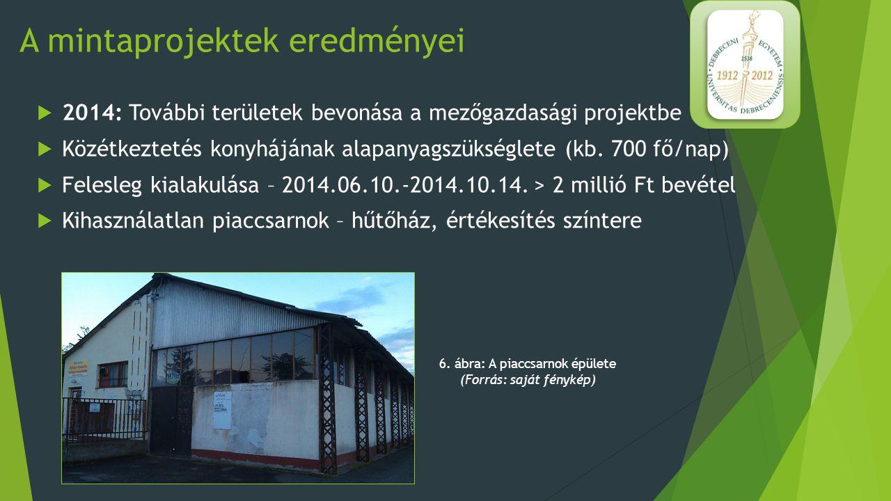 A mintaprojektek eredményei  Betonelem-gyártás: 2.