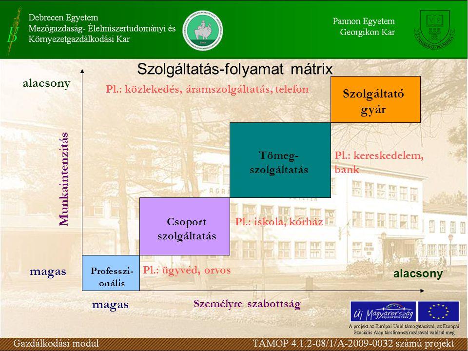 Szolgáltatás-folyamat mátrix Professzi- onális Csoport szolgáltatás Tömeg- szolgáltatás Szolgáltató gyár magas Személyre szabottság Munkaintenzitás al