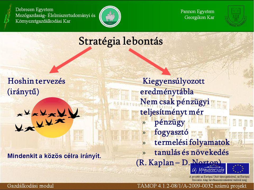 Stratégia lebontás Hoshin tervezés Kiegyensúlyozott (iránytű) eredménytábla Nem csak pénzügyi teljesítményt mér »pénzügy »fogyasztó »termelési folyama