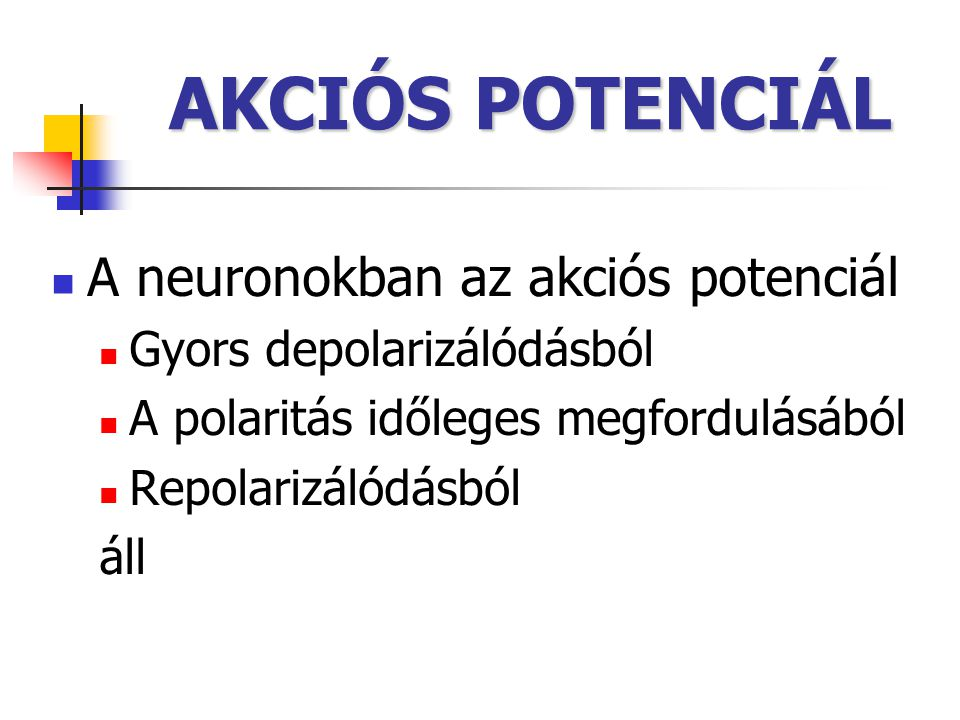 AKCIÓS POTENCIÁL A neuronokban az akciós potenciál Gyors depolarizálódásból A polaritás időleges megfordulásából Repolarizálódásból áll