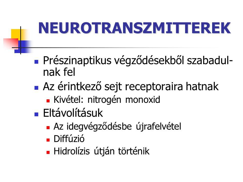 NEUROTRANSZMITTEREK Prészinaptikus végződésekből szabadul- nak fel Az érintkező sejt receptoraira hatnak Kivétel: nitrogén monoxid Eltávolításuk Az id