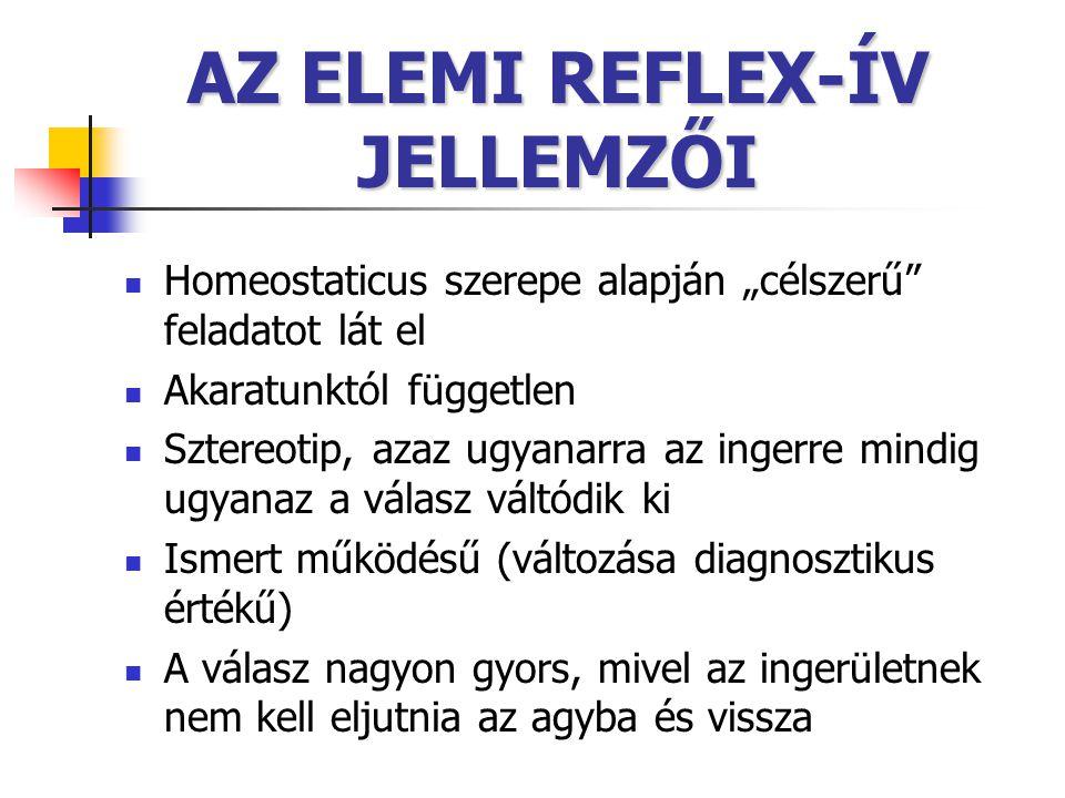 """AZ ELEMI REFLEX-ÍV JELLEMZŐI Homeostaticus szerepe alapján """"célszerű"""" feladatot lát el Akaratunktól független Sztereotip, azaz ugyanarra az ingerre mi"""