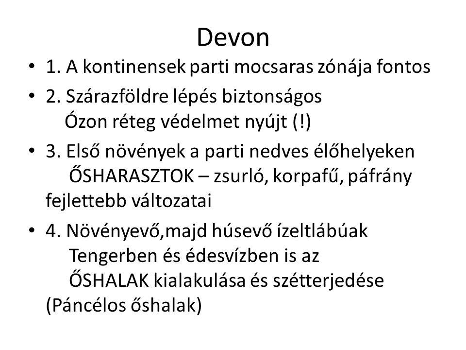Devon 1. A kontinensek parti mocsaras zónája fontos 2. Szárazföldre lépés biztonságos Ózon réteg védelmet nyújt (!) 3. Első növények a parti nedves él