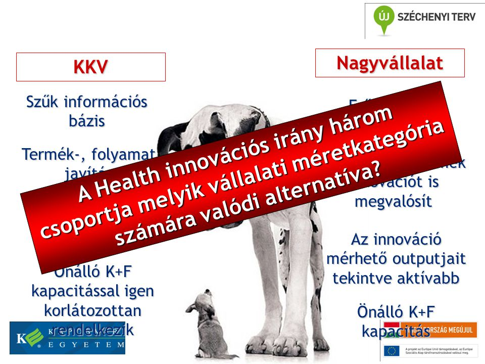 Melyik vállalati kategória melyik Health fejlesztési irányban lehet eredményes.