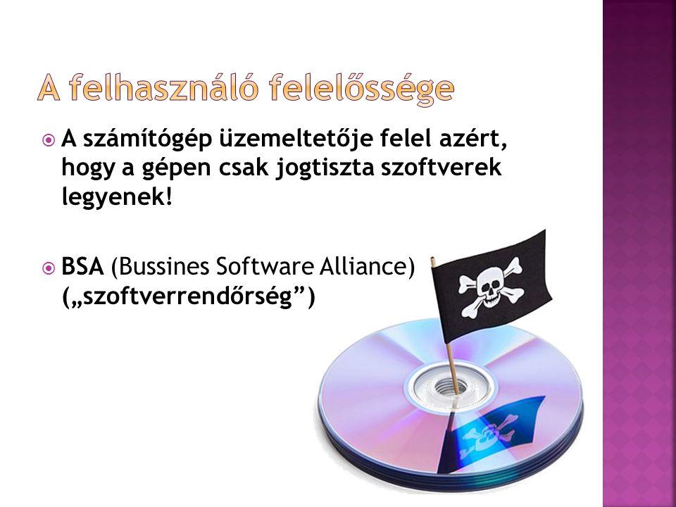 """ A számítógép üzemeltetője felel azért, hogy a gépen csak jogtiszta szoftverek legyenek!  BSA (Bussines Software Alliance) (""""szoftverrendőrség"""")"""