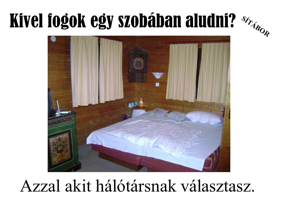 SÍTÁBOR Kivel fogok egy szobában aludni Azzal akit hálótársnak választasz.