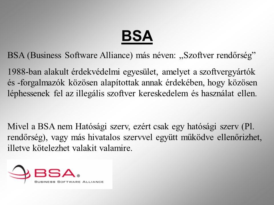 """BSA BSA (Business Software Alliance) más néven: """"Szoftver rendőrség 1988-ban alakult érdekvédelmi egyesület, amelyet a szoftvergyártók és -forgalmazók közösen alapítottak annak érdekében, hogy közösen léphessenek fel az illegális szoftver kereskedelem és használat ellen."""
