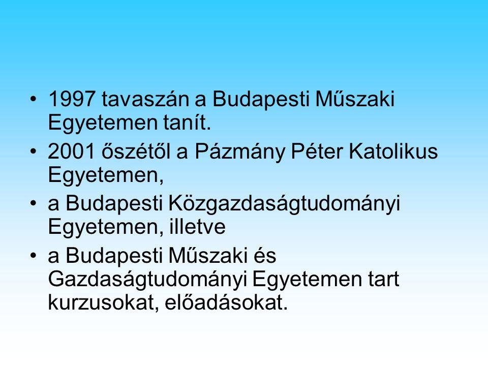 1997 tavaszán a Budapesti Műszaki Egyetemen tanít. 2001 őszétől a Pázmány Péter Katolikus Egyetemen, a Budapesti Közgazdaságtudományi Egyetemen, illet