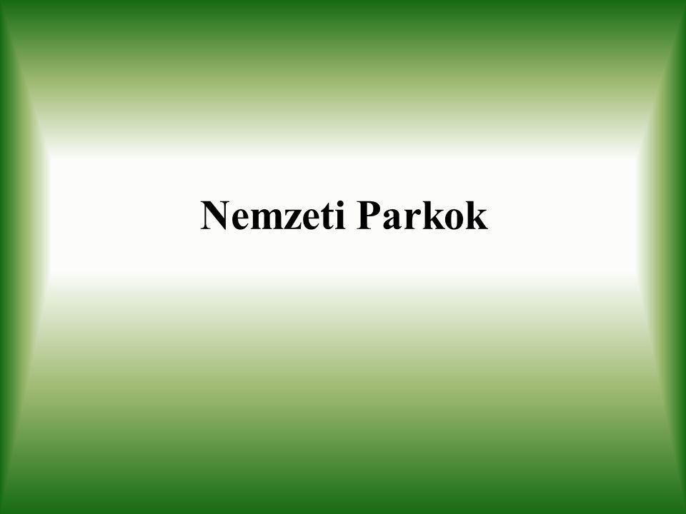 Kiskunsági Nemzeti Park Alapítási év: 1975 Terület: 36000 ha Elhelyezkedés: Duna-Tisza köze a Kiskunságban (7 különálló egység)